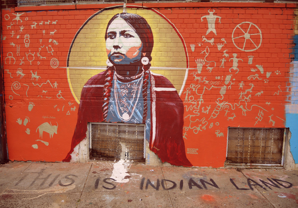 this is indian land - lmnopi