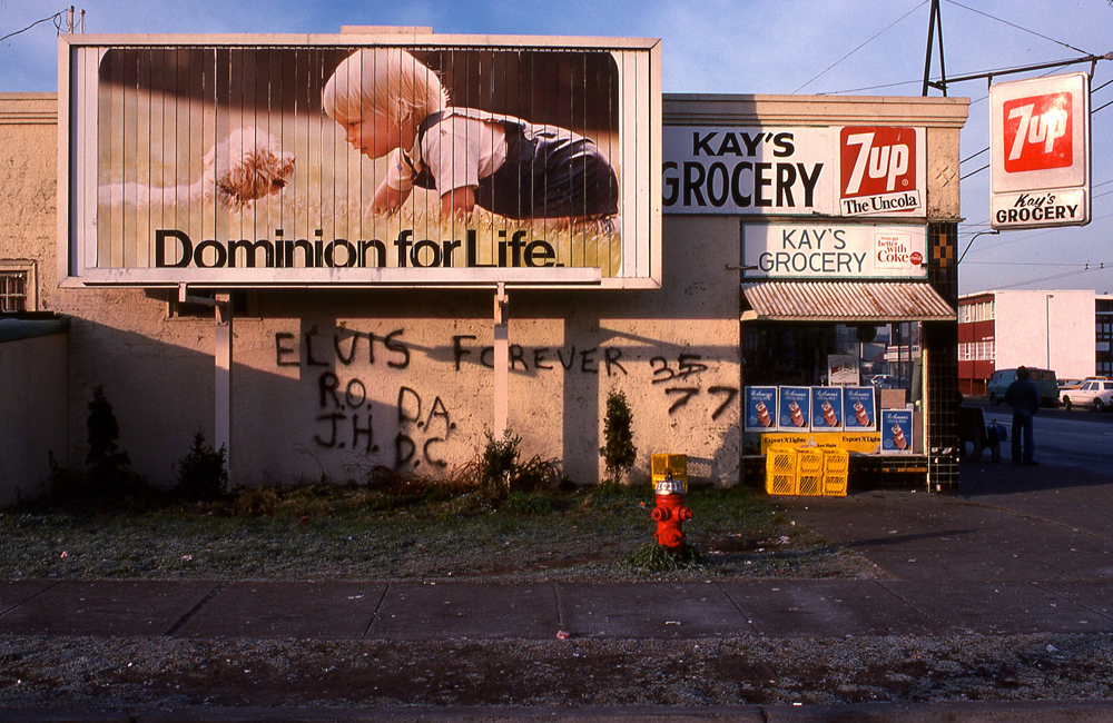 dominion for life, elvis forever, vancouver: january, seventy eight
